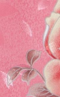 Pオーロラ姫Details3