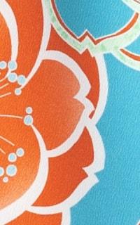 えり水色Details3
