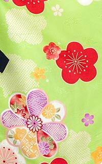 梅古典緑Details1