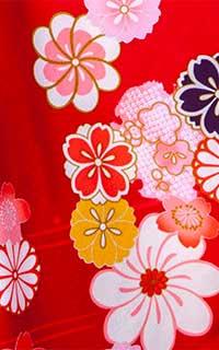 赤大輪桜Details1