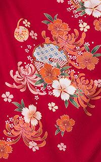 赤菊Details1