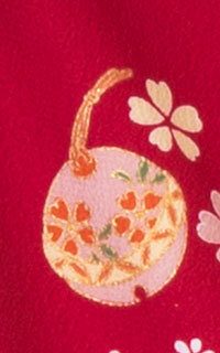 赤菊Details3