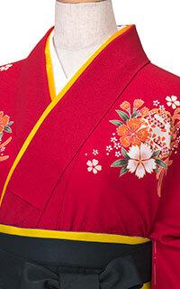 赤菊Details2
