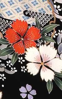 黒菊Details3