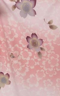 ピンクぼかし桜Details1