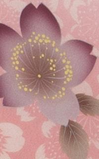 ピンクぼかし桜Details3