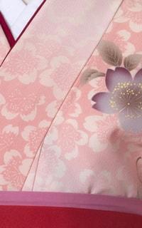 ピンクぼかし桜Details2