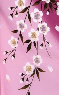 ピンクしだれ桜Details1