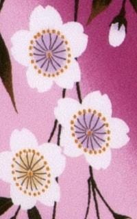 ピンクしだれ桜Details3