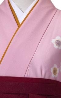 ピンクしだれ桜Details2