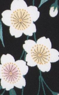 黒しだれ桜Details3