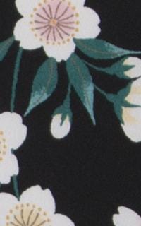 黒しだれ桜Details2
