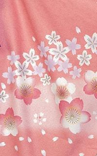 ピンク春分Details1