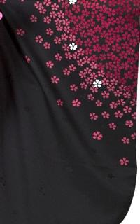 黒赤桜Details1
