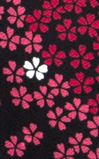 黒赤桜Details2