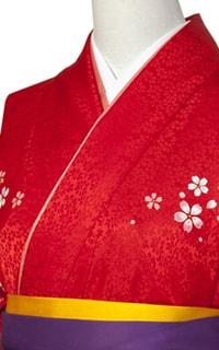 赤舞桜Details2