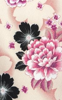 春の小川Details1