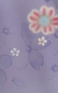 うす紫淡雪