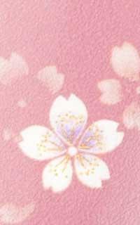 にごり桜紫