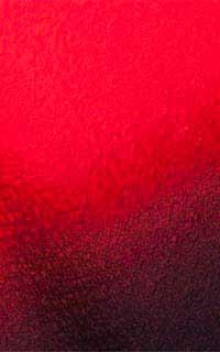 赤花紋袖黒